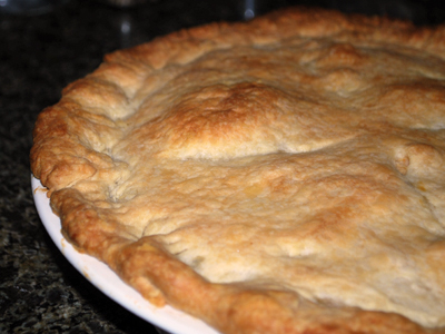 turkey pot pie1
